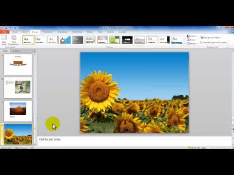 MS PowerPoint Tutorial - Changing Slide Background