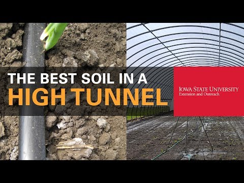How to Get the Best Soil in Your High Tunnel