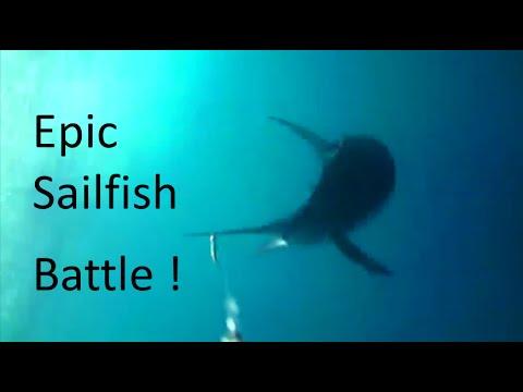 Fishing Adventures #101 - Epic Sailfish Battle in Fujairah