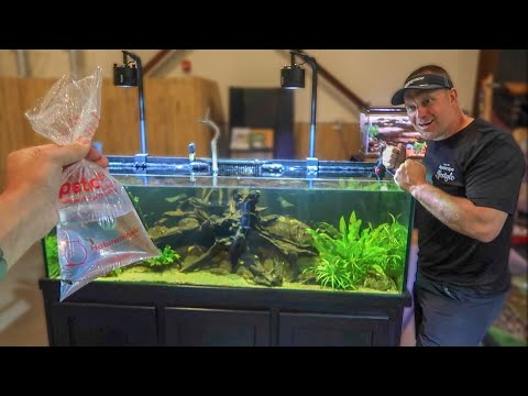 SURPRISING Greg with NEW FISH!!!