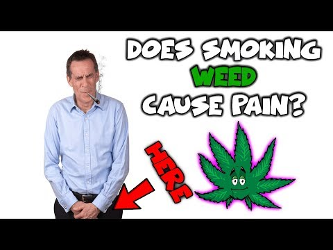 Does Smoking Weed Cause Pain In Your Testicles 🍒🌿(New Updated Video)