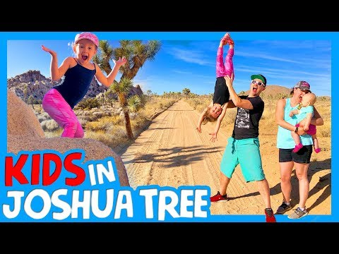 🌵 TOP 3 THINGS TO DO IN JOSHUA TREE WITH A FAMILY 🏜RV Living Joshua Tree National Park