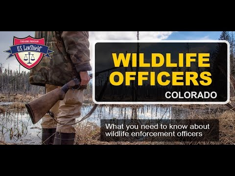 Wildlife Officers in Colorado: What You Need to Know