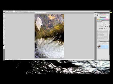 Selective Coloring- Photoshop CS4