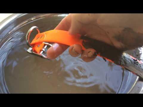 SaltyDog™ Waterproof, Mud Proof, Easy Clean Dog Collars - Muddy Dog Test