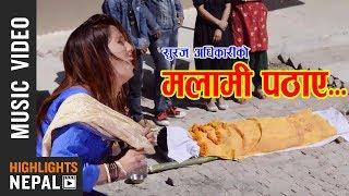 Malami Pathaye - New Nepali Lok Dohori Song 2017/2074   Nabin Birahi Shrestha, Muna Thapa Magar