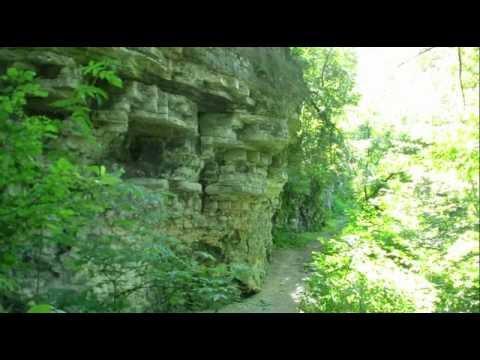 Bayshore County Park, Niagara Escarpment