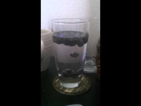 vodka tonic blueberry ice sink float