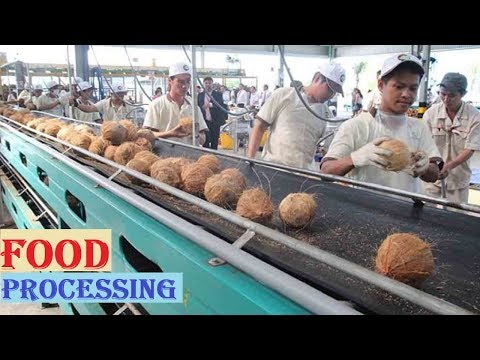 Amazing COCONUT Processing in Factory ★ Coconut Oil, Milk & Water ★ Awesome Food Processing Machines
