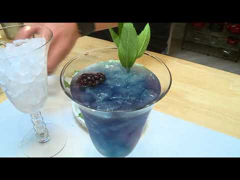 FOX 2 9AM THE SIMPLE BARTENDER COLORFUL DRINKS