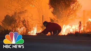 Motorist Pulls Over On Highway To Rescue Rabbit From Wildfire | NBC News