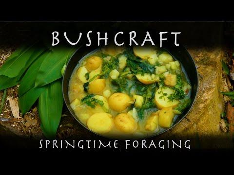 Springtime Foraging