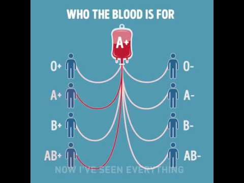 Which blood group can be donated to whom