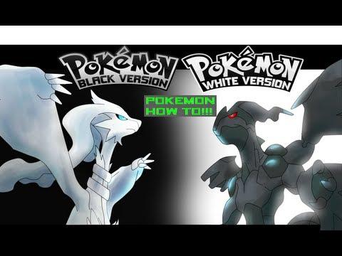 Pokemon Black & White - How To Get HM:06 Dive