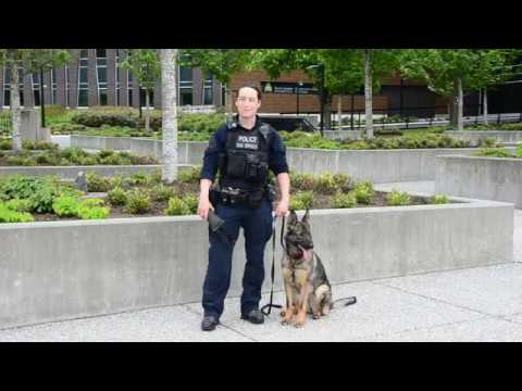National Police Week Integrated Police Dog Services