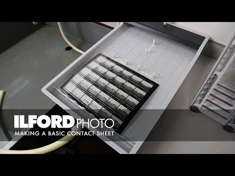 Making a Basic Contact Sheet