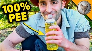 Download Can PEE Cure Ant Stings?! Video