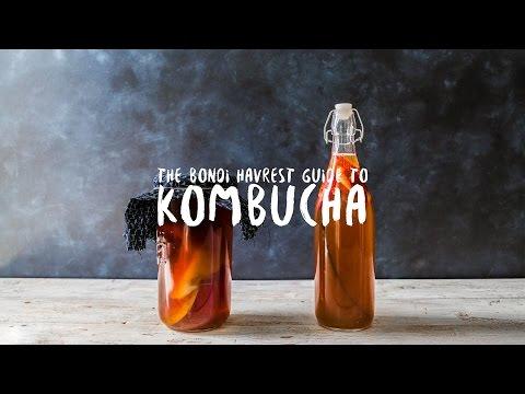 How to make Kombucha Tea | Bondi Harvest Basics