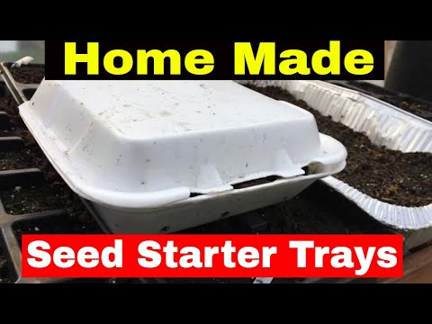 How to Make Free Seed Start Trays