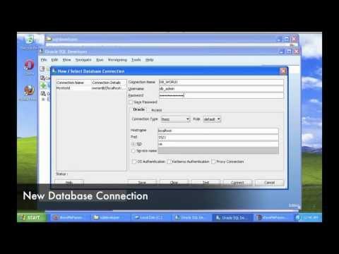 Show Me Password SQL Developer for Windows