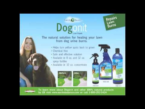 Learn about Earth's Balance All-Natural Pet Products