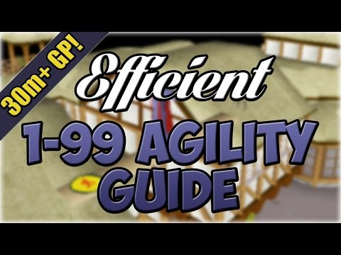 EFFICIENT 1-99 Agility Guide! | 30m+ PROFIT | Oldschool 2007 Runescape
