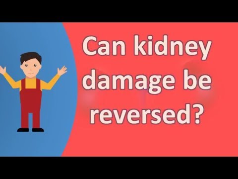 Can kidney damage be reversed ?