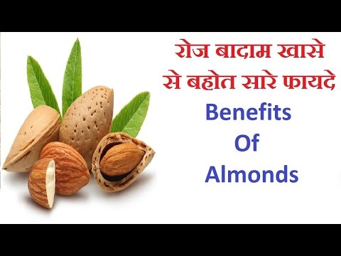 रोज बादाम खाने से बहोत सरे फायदे   Benefits Of Almonds   Hindi