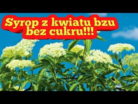 Syrop z kwiatów bzu bez cukru prosty przepis dla kazdego