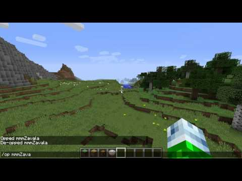 How to make someone an Admin(Opped) on a Minecraft Server 2015