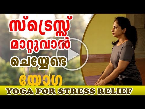 Yoga Stretching Exercises | Yoga for stress relief and anxiety in Malayalam | Ethnic Health Court