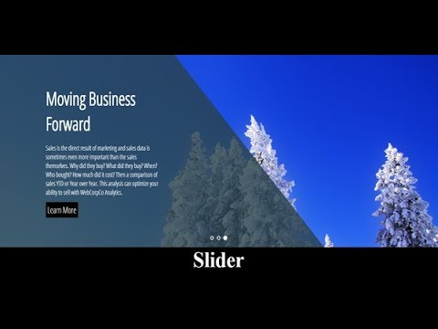 Autoplay Image Slider In Css With Text Animation