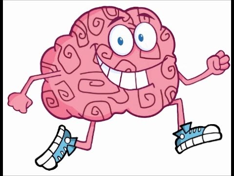 The Nervous System - Part 1, 5th Standard, Science, CBSE