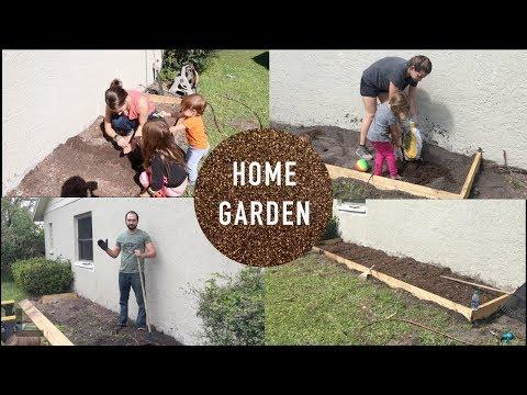 DIY Home Veg. Garden + Germinating Fruit Seeds to Trees! My Tiny Green Thumb.