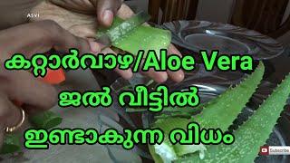 കറ്റാർവാഴ/Aloe Vera ജൽ വീട്ടിൽ ഇണ്ടാകുന്ന വിധം Alovera for skin&hair malayalam Asvi