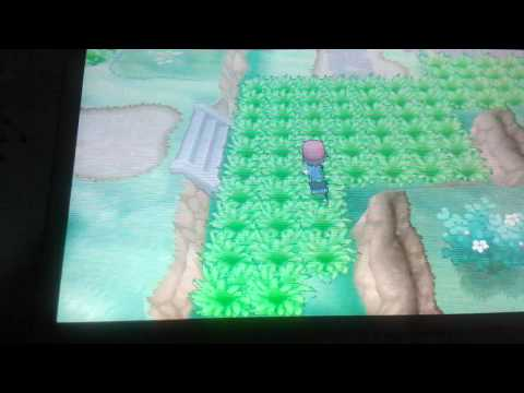 How to catch minun and plusle in pokemon x