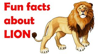 Lion facts for kids - Facts about lion for preschool children - Simply E-learn Kids