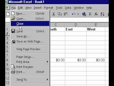 Microsoft Office Excel 2000 Save workbook as a template