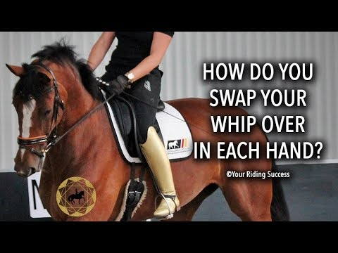 How Do You Swap Your Whip Over In Each Hand? - Dressage Mastery TV Ep215