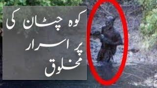 Koh-i-Chiltan peak mysterious creatures in balochistan