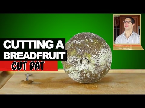 How to Cut a Breadfruit