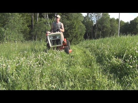 Mowing Clover Food Plot with Garden Tractor Can Be Done!!!!