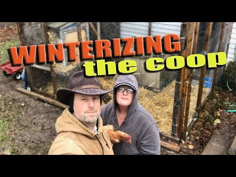 Winterizing The Coop