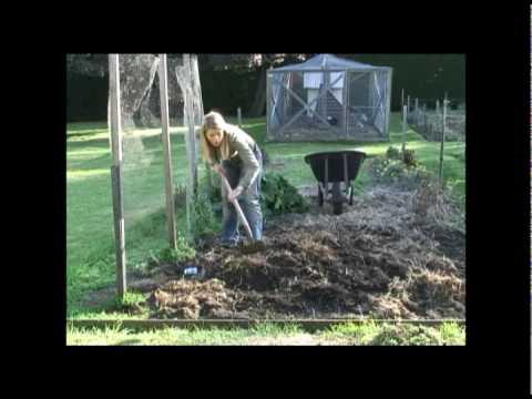 Make a  Backyard Vegetable Patch