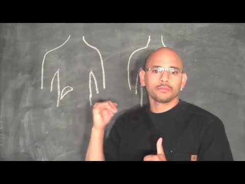 Personal Injury Doctor Atlanta - How the Gallbladder Causes Back Pain