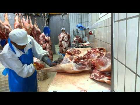 Deboning pork shoulder and ham leg