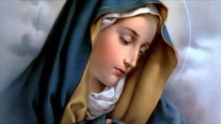June 14 Prophecy MESSAGE Mother Mary
