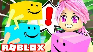 Becoming a funny BOX in Roblox!