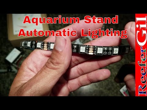 Build Series| Eps. 11| Aquarium Stand LED Lighting