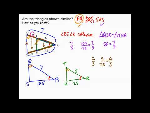 8.3d notes Triangle Proportionality Theorem